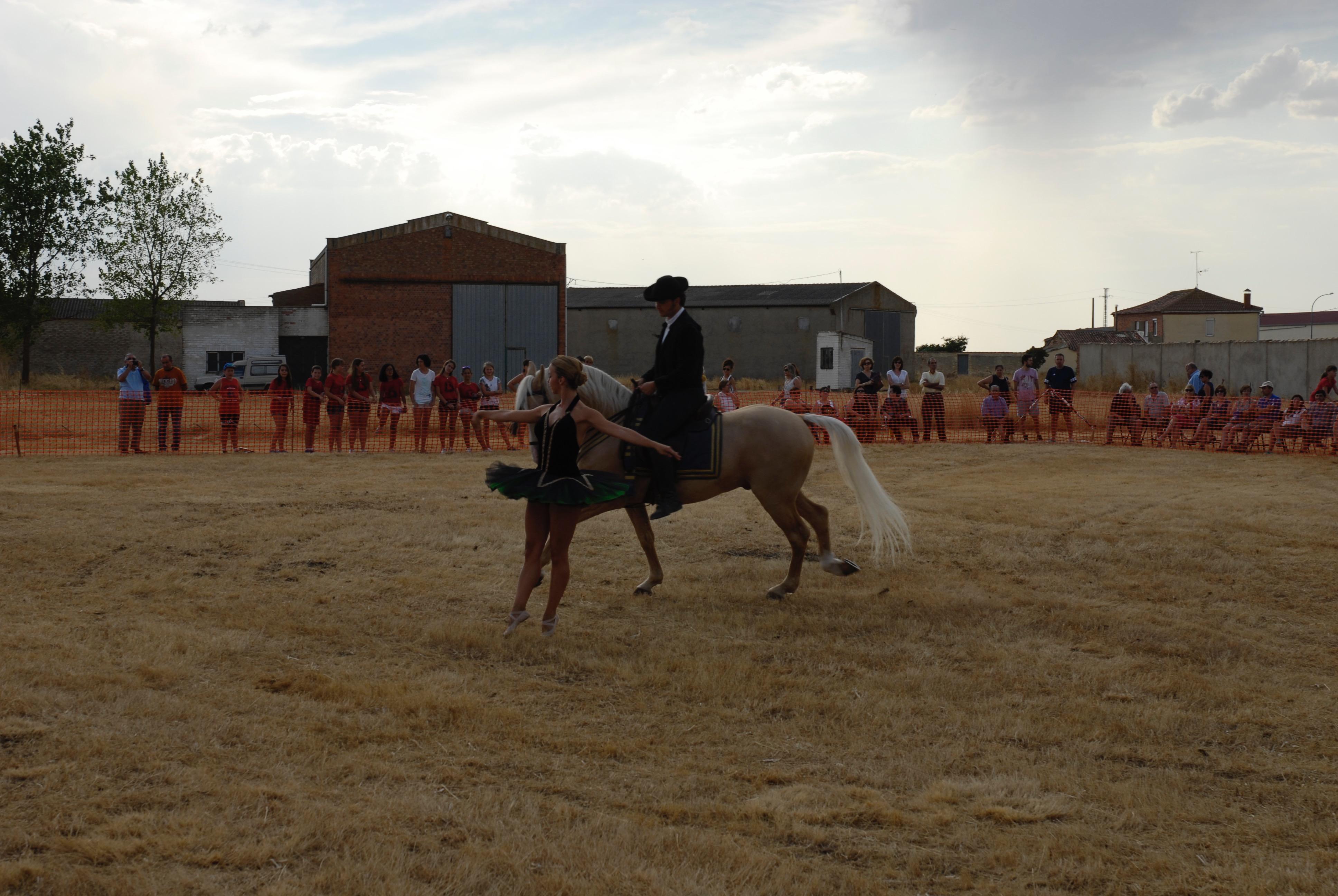 Magos de la equitación 2016 (6)
