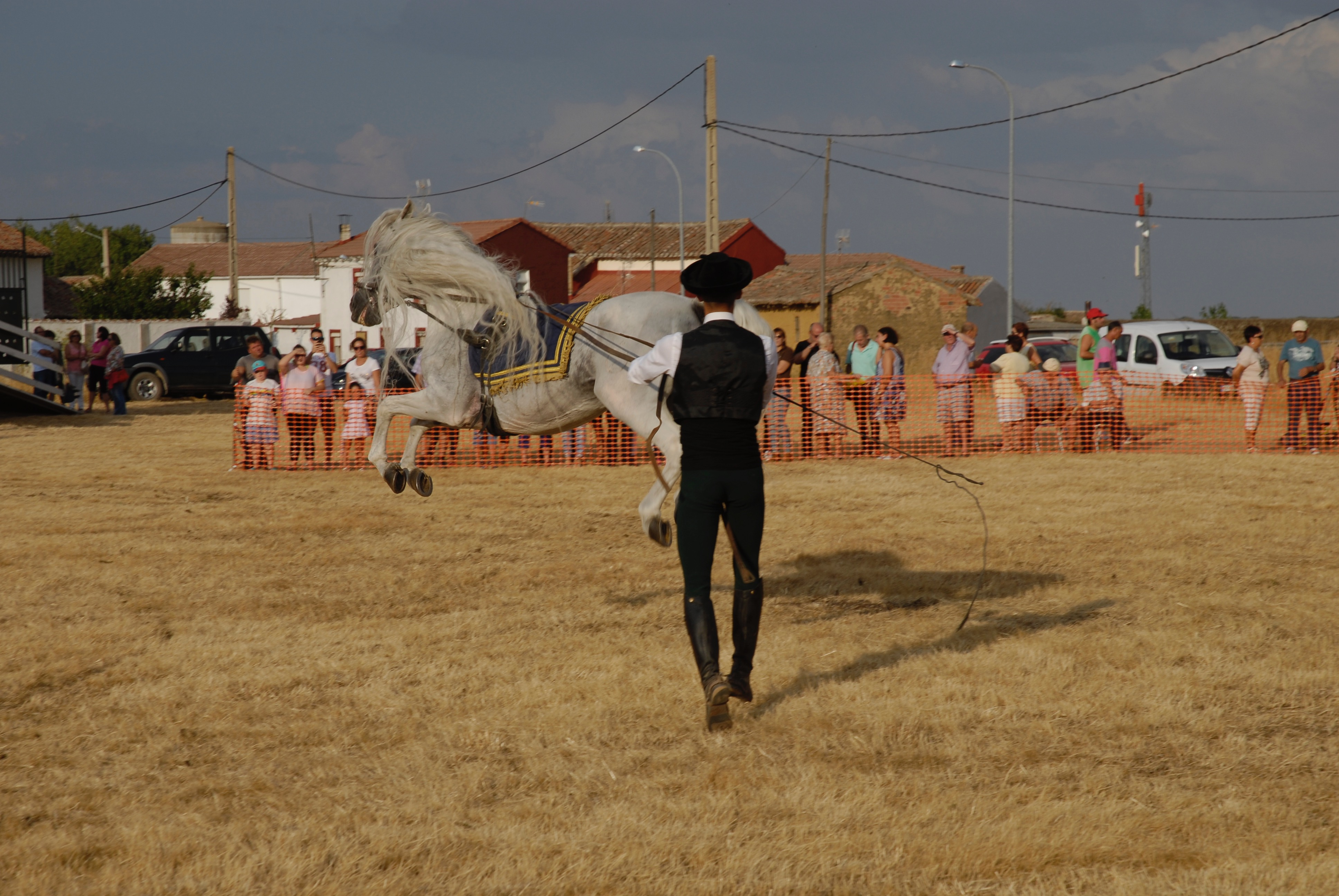 Magos de la equitación 2016 (67)