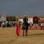 Magos de la equitación 2016 (72)