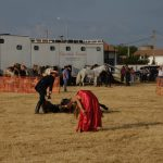 Magos de la equitación 2016 (79)