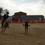 Magos de la equitación 2016 (8)