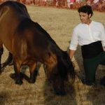 Magos de la equitación 2016 (94)