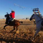 cintas a caballo 2016 (3)