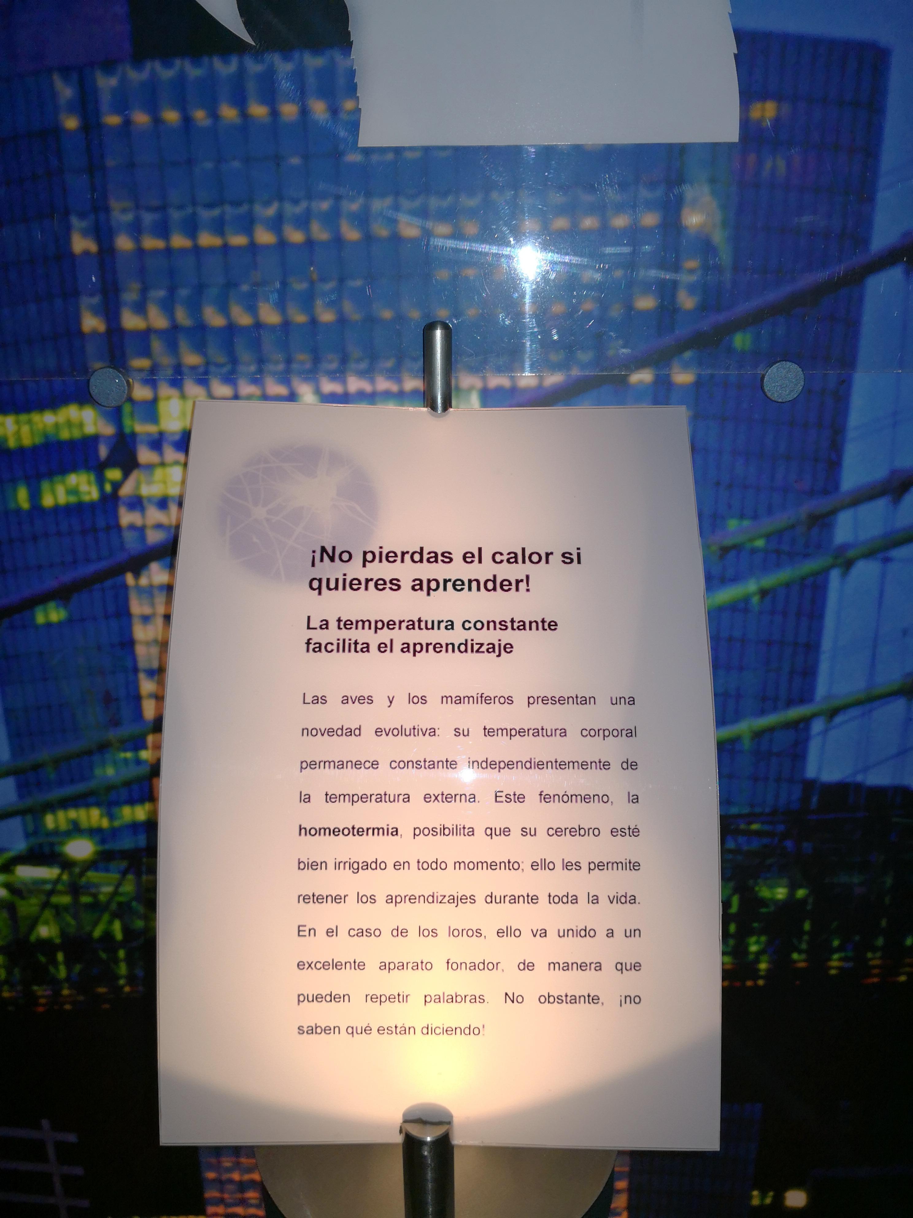 Visita a las Cortes CYL y Museo de la Ciencia. (Semana Cultural 2018)